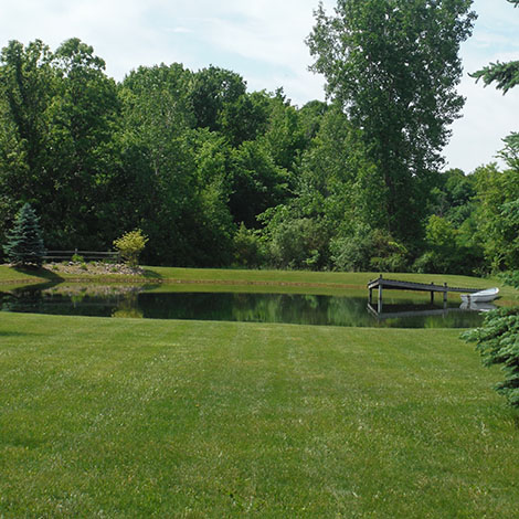 We just bought a house with a half-acre pond. Where do we start?