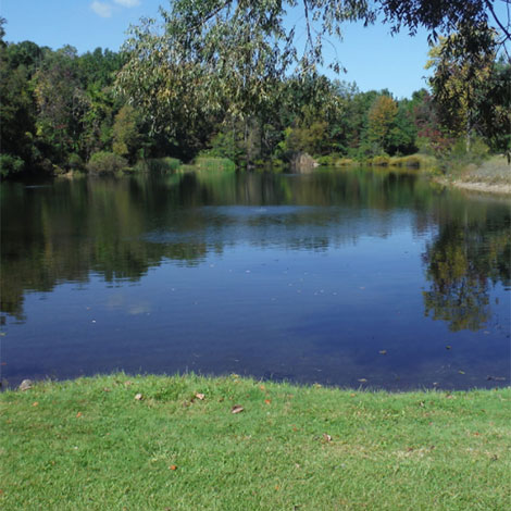 I'm buying property with a half-acre pond. What do I need to know?