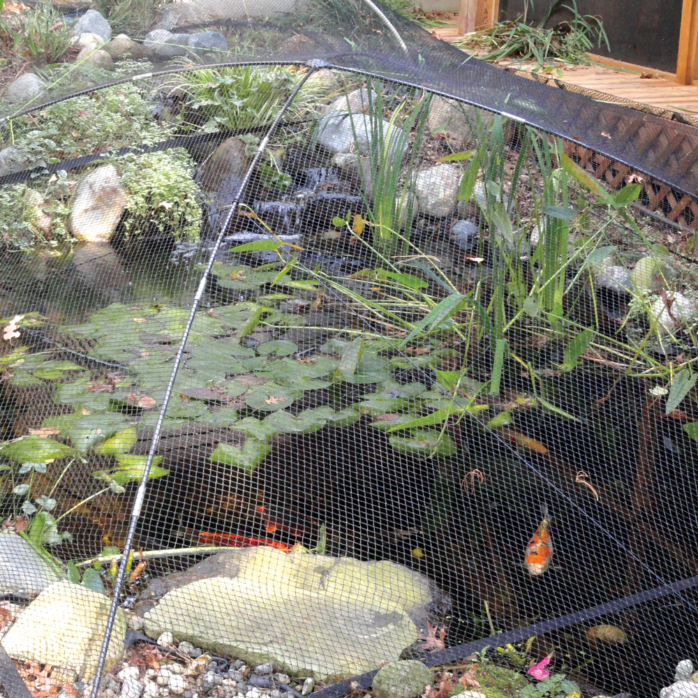Atlantic™ Pond & Garden Protector Net Kits